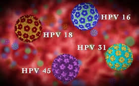 images hpv